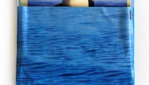 Destination BC Orca #4DA6DC