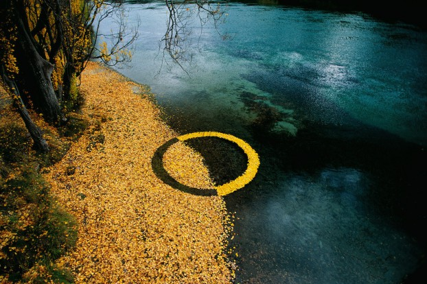 martinhill_art_Autumn-Leaf-Circle--1050x700