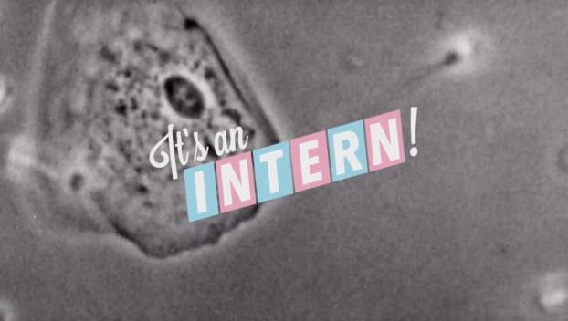 Intern3
