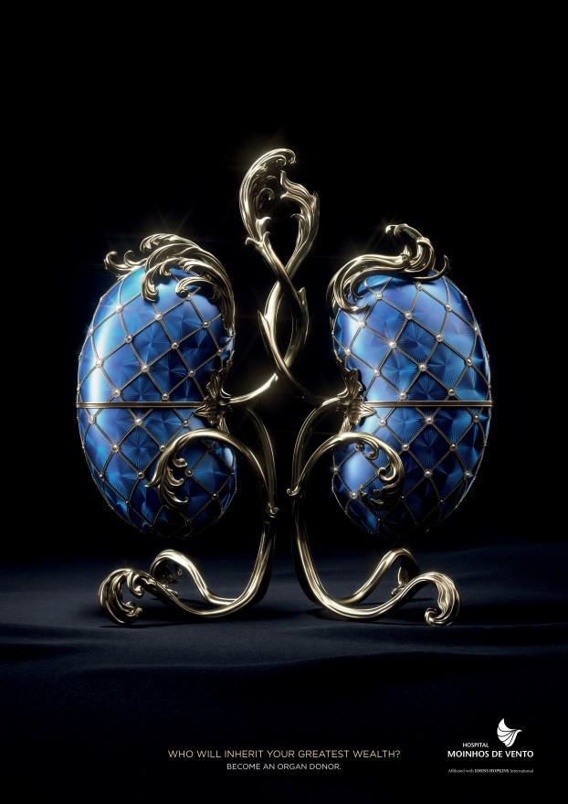 03 Kidney